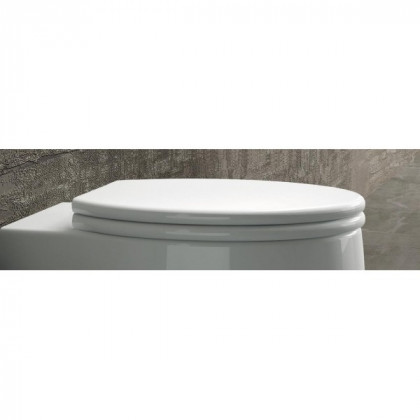 Arezzo design California Soft Close lecsapódásgátlós wc tető AR-CSC HDA227